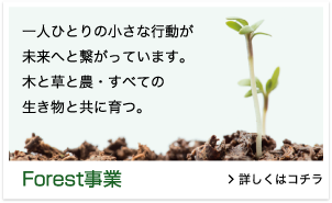 Forest事業